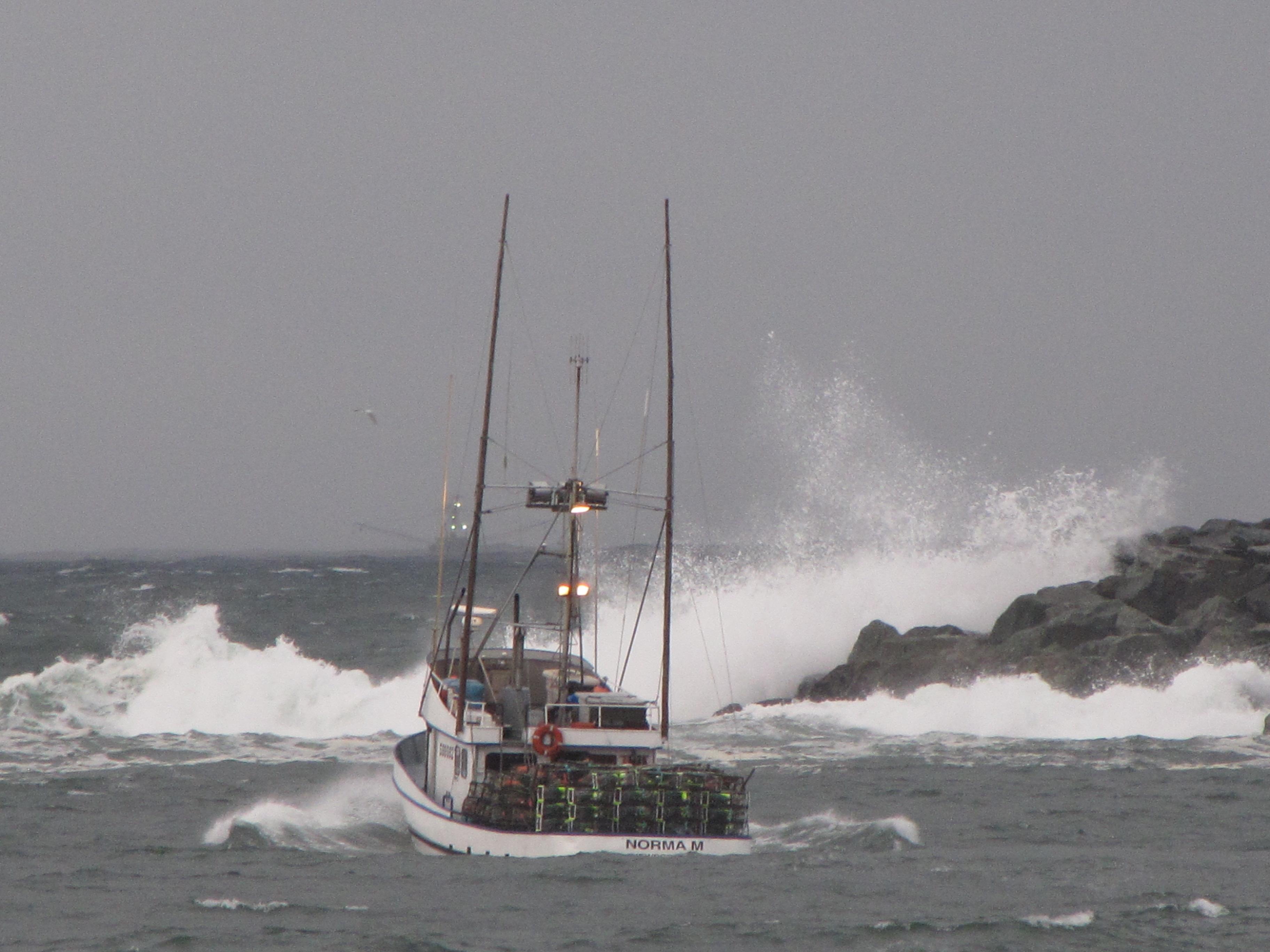 Crabbing on the oregon coast   scod.com
